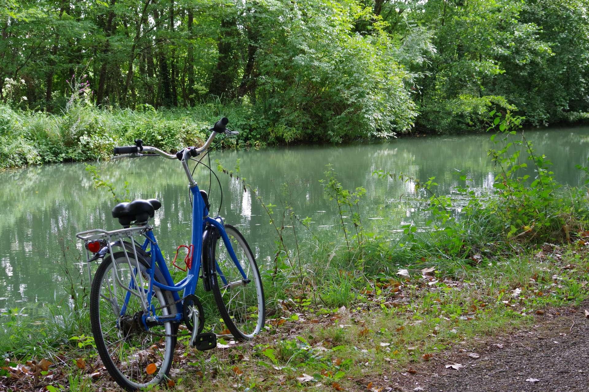 loue ton vélo au bord du canal pour une journée dans la nature